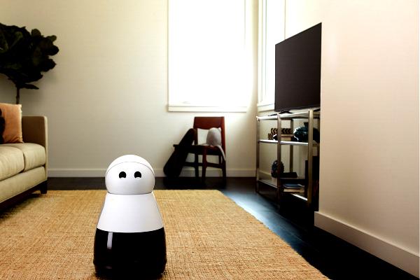 Home Robot Kuri